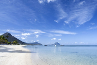 Mauritius Data Capture Campaign Success